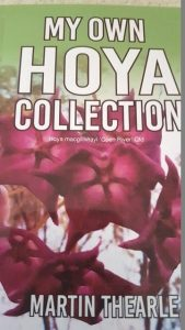 Hoya Collection Book - Martin Thearle